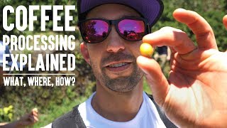 Coffee Explained. What Coffee Is, Where Coffee Comes From, Coffee Processing. | Real Chris Baca