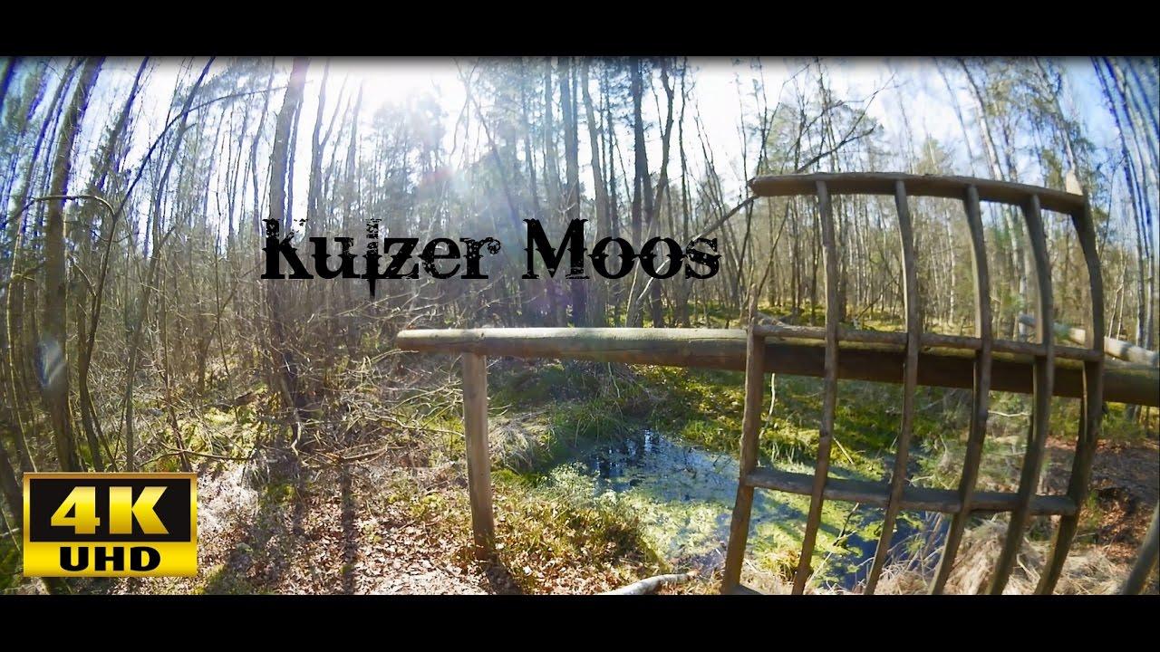 Kulzer Moos