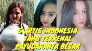 Download Video 5 ARTIS INDONESIA YANG MEMILIKI PAYUDARA BESAR MP3 3GP MP4