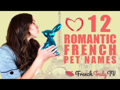 Most Adorable French Dog Names | 350+ Names Based On Food & More