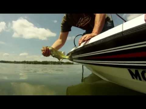 How To Properly Catch And Release A Fish