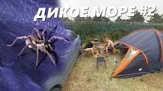 видео Отдых дикарем на Черном море с палатками