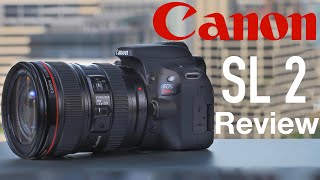 Canon SL2 (200D) Review BEST Camera for Beginners