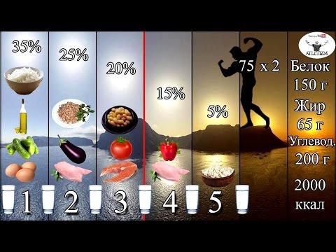 Доходчиво о правильном питании для сжигания жира и набора мышечной массы! Часть 2 - СХЕМА РАЦИОНА!
