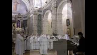 SPIRITUS  DOMINI, Pentecoste, Gregoriano, Giovanni Vianini; Organo, Paolo Oreni, Villasanta, It.