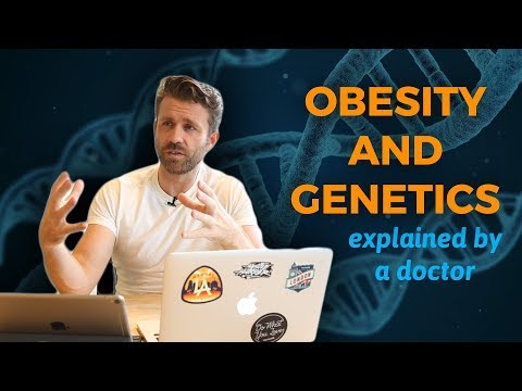 How Genetics Actually Relate To Obesity