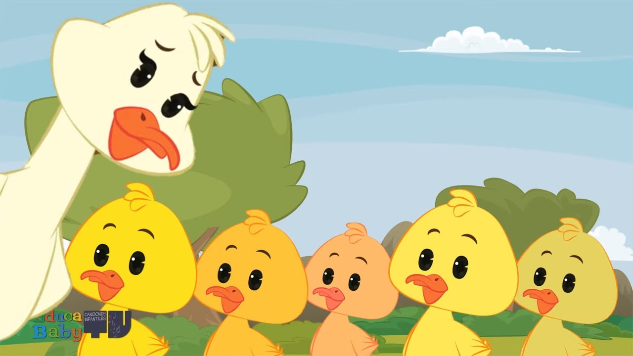 Cinco Patitos Se Fueron A Nadar Patitos Cua Cua Canciones Infantiles Youtube