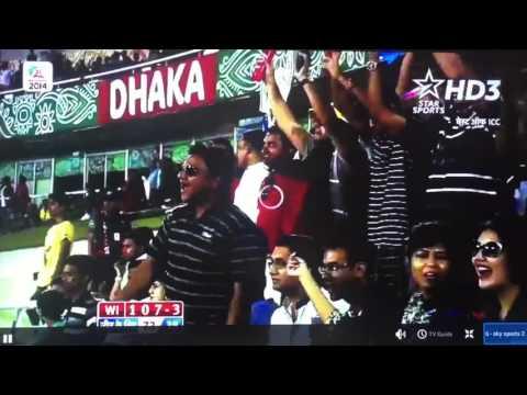 Plustv HD IPTV MEDIA BOX