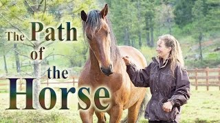 The Path of the Horse - Full Length documentary thumbnail