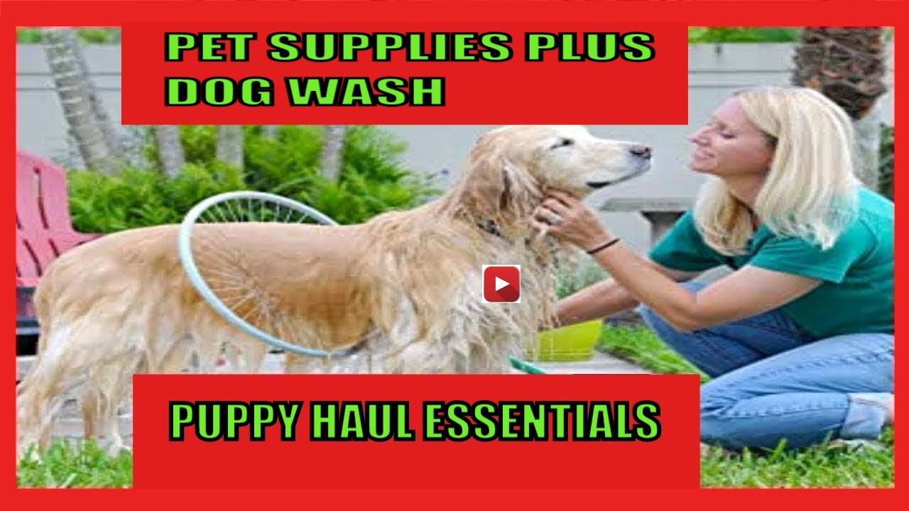 PET SUPPLIES PLUS DOG WASH & CAT WASH YOU MUST HAVE