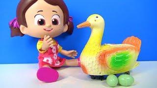Niloya Heidi ve Maşa Sürpriz Yumurta Yumurtlayan Şaşkın Ördek Twinkle Little Star Çocuk Şarkısı