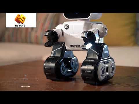 2018 Intelligent programming coin bank RC robot