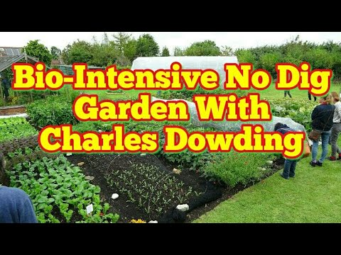 Charles Dowding & His Incredibly Productive Bio-Intensive No Dig Smallholding Garden | Open Day