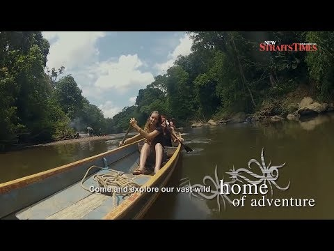 Visit Sarawak Year