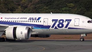 Boeing 787-8 Dreamliner Kumamoto Airport landing ANA 阿蘇くまもと空港着陸