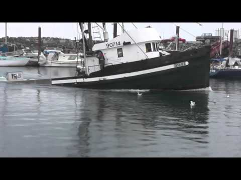Sinking Packer Herring 2014