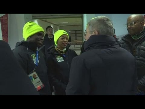 Olympics:beer company rescues Jamaican women's bobsleigh team