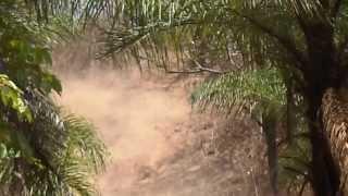 1º trilhão de moto ribeirão das neves justinopolis 2013.offroad ,trilhas e off road