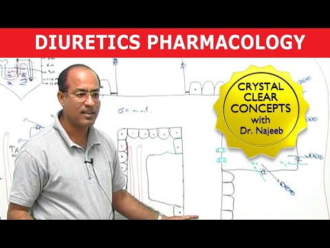 Diuretics - Renal Pharmacology by Dr  Najeeb Lectures
