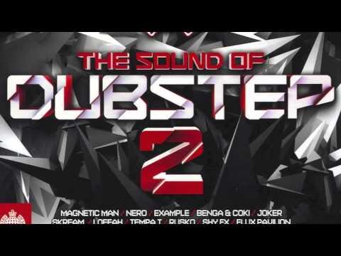 04  Cracks Flux Pavilion Remix  The Sound of Dubstep 2