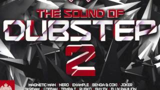 04 - Cracks (Flux Pavilion Remix) - The Sound of Dubstep 2