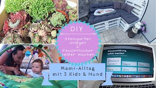 DIY Steingarten |Feuchttücher DIY |Steuererklärung |Kathi´s Daily Life