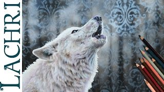 White Wolf colored pencil and airbrush speed drawing - Time Lapse Demo by Lachri