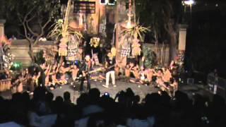 lolot barong bangkung vs cek cek live