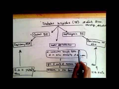 Differentiating Central diabetes insipidus and nephrogenic diabetes insipidus