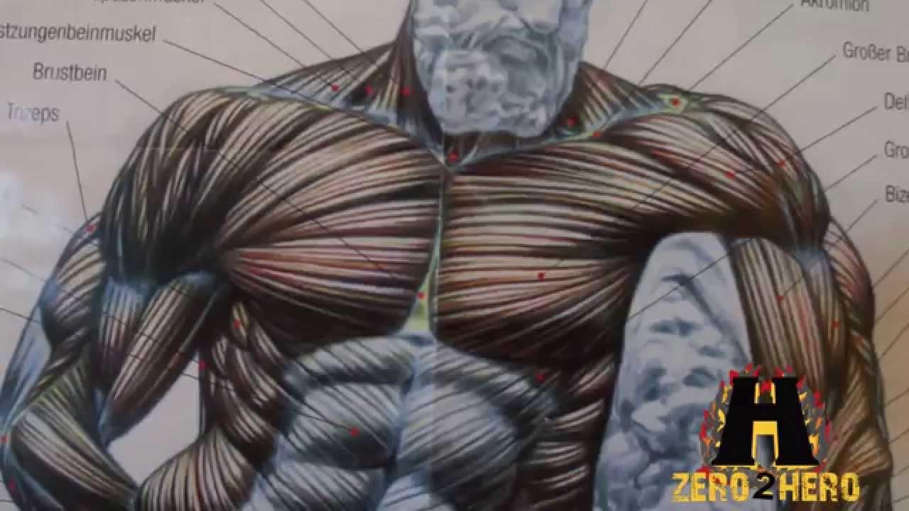 Die innere Brust trainieren? So Gehts!! - YouTube