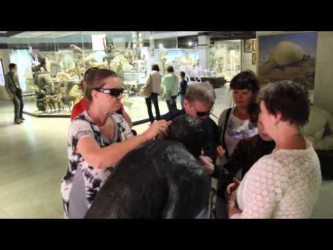 Экскурсия для слепо-глухих посетителей Дарвиновского музея