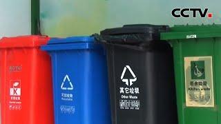 [中国新闻] 关注北京市垃圾分类 2020年开展全区域垃圾分类示范片区创建   CCTV中文国际