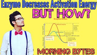 Enzyme Decreases Activation Energy, BUT HOW? | Enzyme Kinetics | Morning Bytes