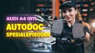 Montering Agm batteri AUDI A4: videoopplæring