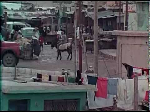 Palestine  Paramilitary Organizations, Black September, the PLO and Israel (1976 Documentary Film)