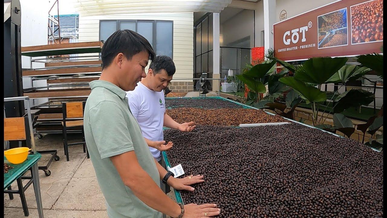 Tham quan Farm Got Coffee, SIÊU PHẨM ĐẠI CHIẾN với cà phê THẾ GIỚI