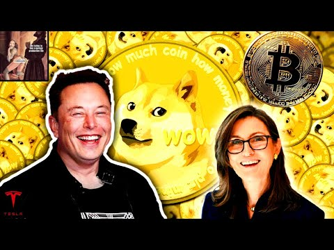 Elon Musk and Cathie Wood: Bitcoin and Dogecoin (Cryptocurrencies!)
