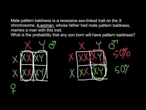 Male Pattern Baldness Genetics