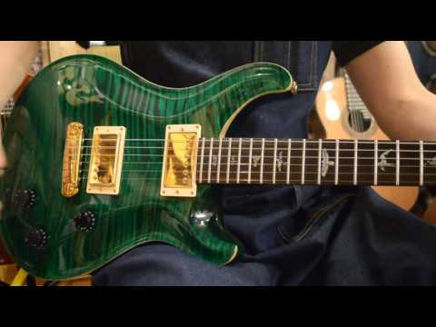 Paul Reed Smith Custom22 CustomOrder / Emerald Green@guitarshoptantan