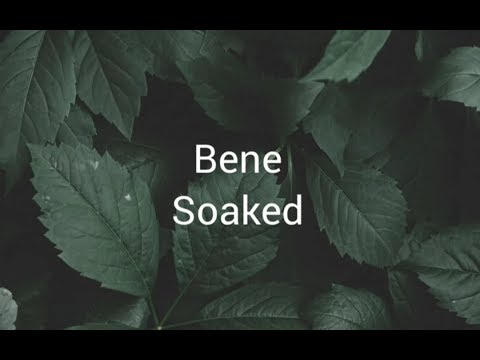 BENE- Soaked (lyrics)