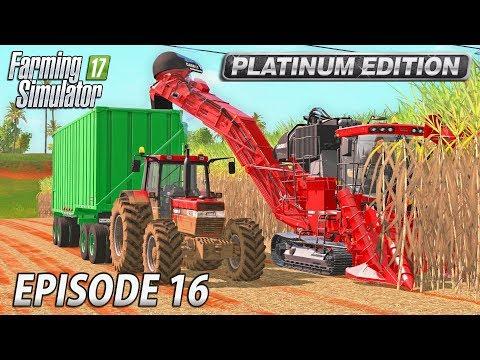 A SUGARY PROFIT   Farming Simulator 17 Platinum Edition   Estancia Lapacho - Episode 16