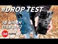 Gambar cover 아이폰12 프로맥스 vs 갤럭시 노트20 울트라, 3층 높이에서 던져봤습니다 #드롭 #테스트