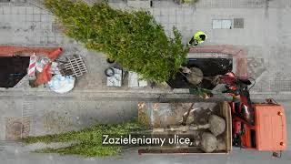 Jesienne sadzenie drzew w Łodzi