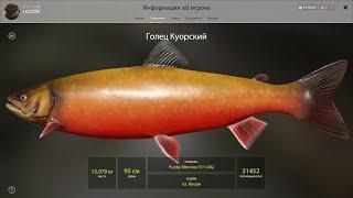 Русская рыбалка 4:Фарм на Куори!!!РР4