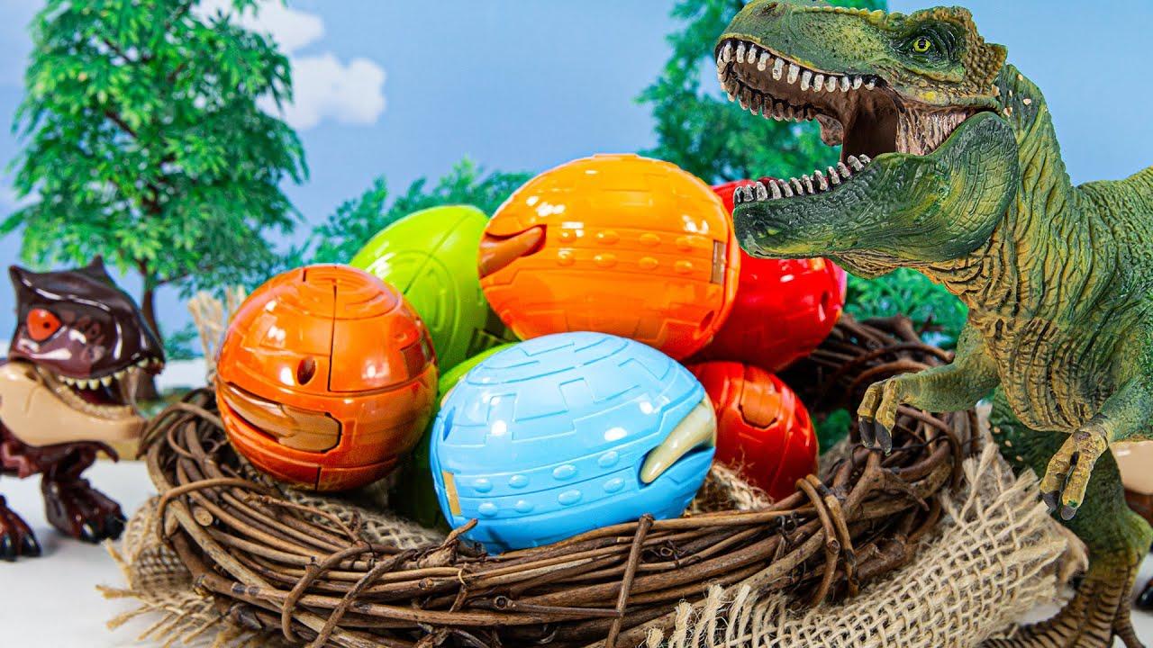 공룡들이 둥지에 알을 낳았어요 부화하면 어떤공룡이 될까요?