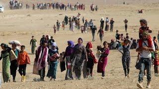 أخبار عربية وعالمية: 232 مليون مهاجر في يوم المهاجرين العالمي