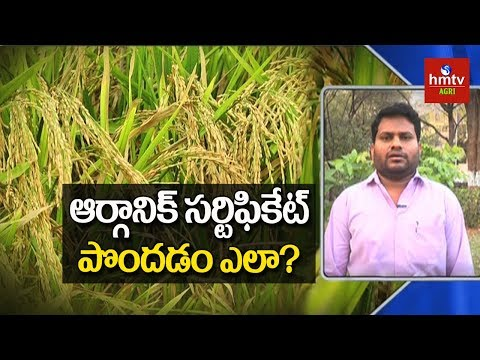 How To Get Organic Certification ? | hmtv Agri