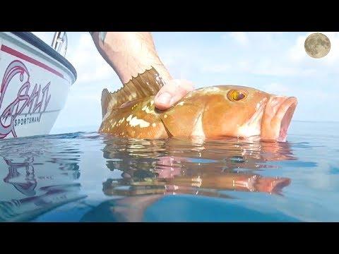 Moon Phases | Fishing Full Moon Anna Maria Island Florida