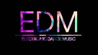 EDM Mix 2013