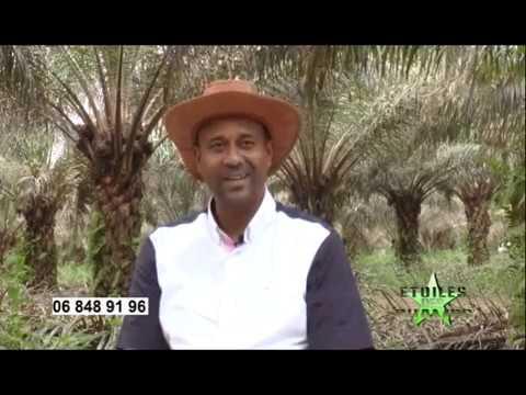 TV CONGO - Emission étoiles des champs - CAPFOR